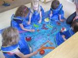 Blue Room: Beloved Fish,Skippy