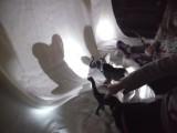 Exploring Light andShadow