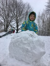 What can we learn from asnowball?