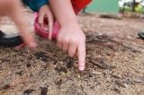 Preschool: A SmartInvestment